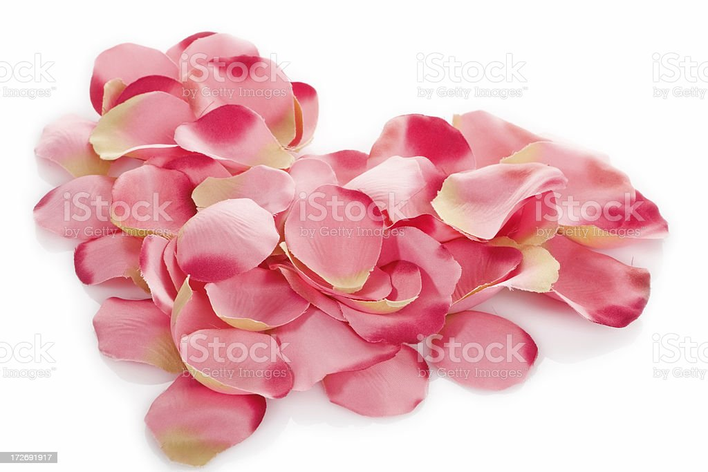 heart made of pink petals on white royalty-free stock photo