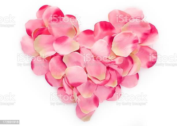 Heart made of pink petals on white picture id172691918?b=1&k=6&m=172691918&s=612x612&h=elicew3rhayslihv ukvsn5vb8zwaxhcqclaebwiis4=