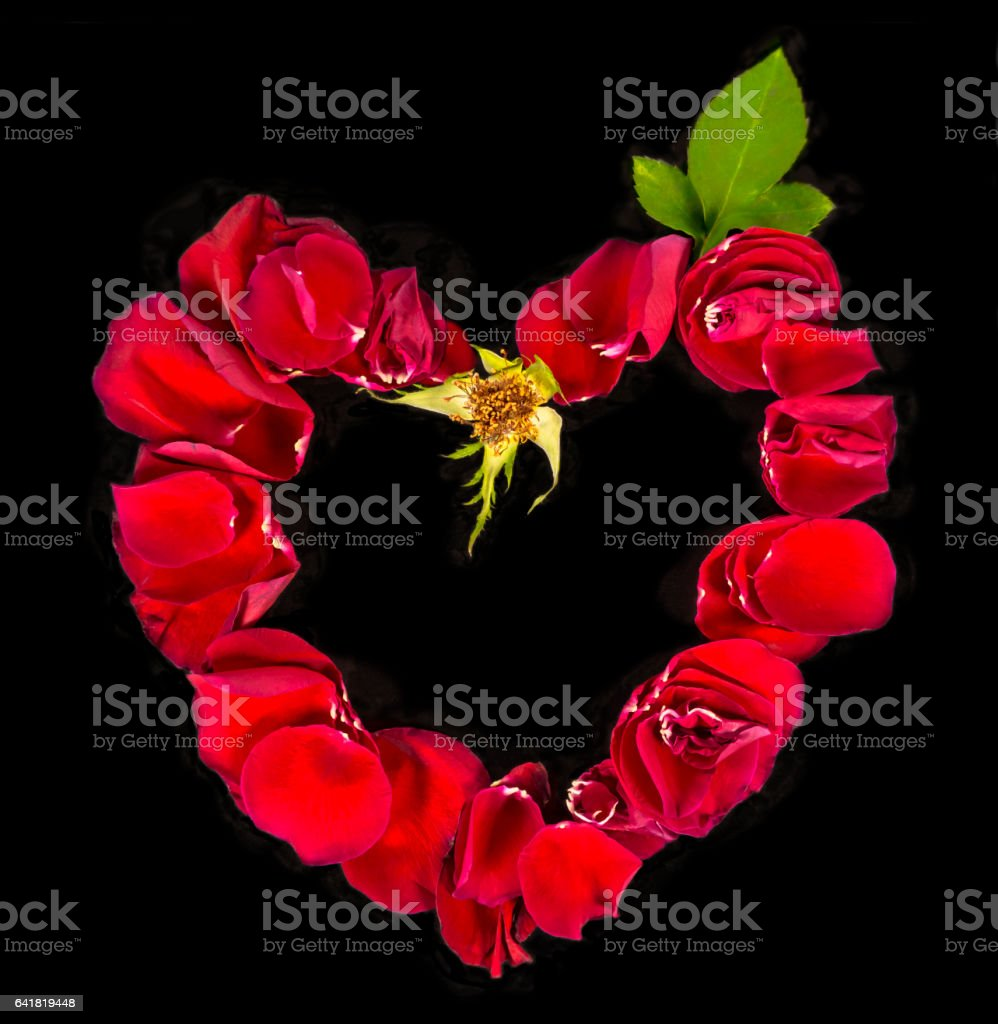Heart made with rose petals stock photo