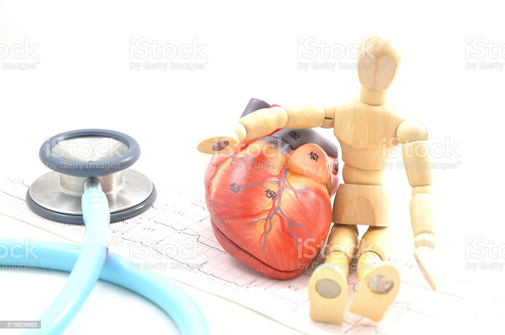 heart model and medicine stock photo