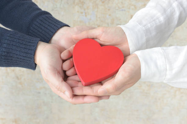 Heart object covered by male and female hands stock photo