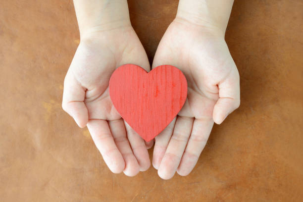 Heart object in child's hands stock photo