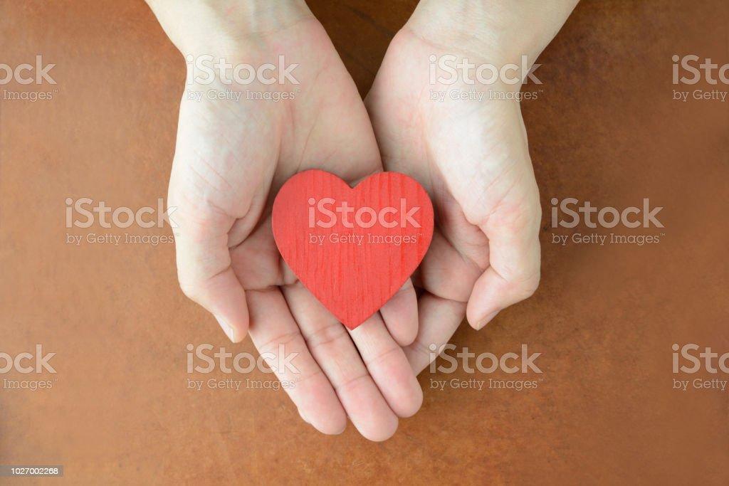 女性の手で心オブジェクト - おもちゃのロイヤリティフリーストックフォト