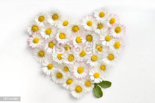 Heart made of yellow-white flowers of daisy and two green petals on white background. Studio shot.