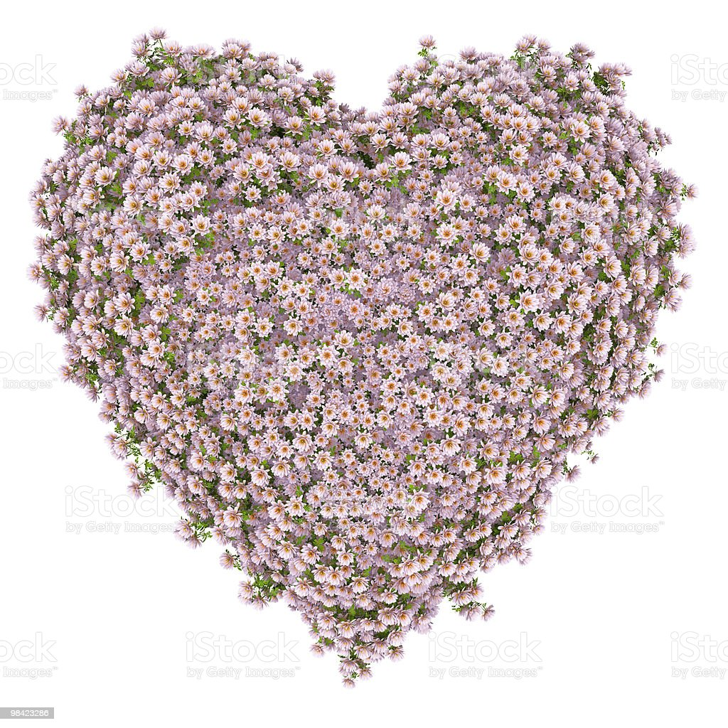 heart of light pink flowers royalty-free stock photo