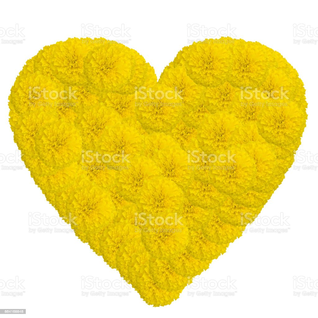 Heart of marigolds flower isolated on white background with cli royalty-free stock photo