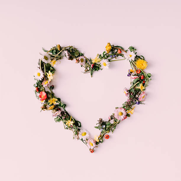 heart of nature. love concept. flat lay. - love stock photos and pictures
