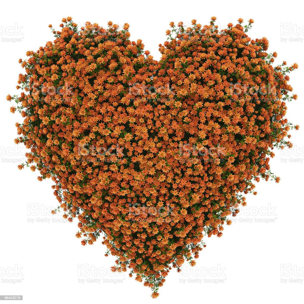 heart of orange flowers royalty-free stock photo