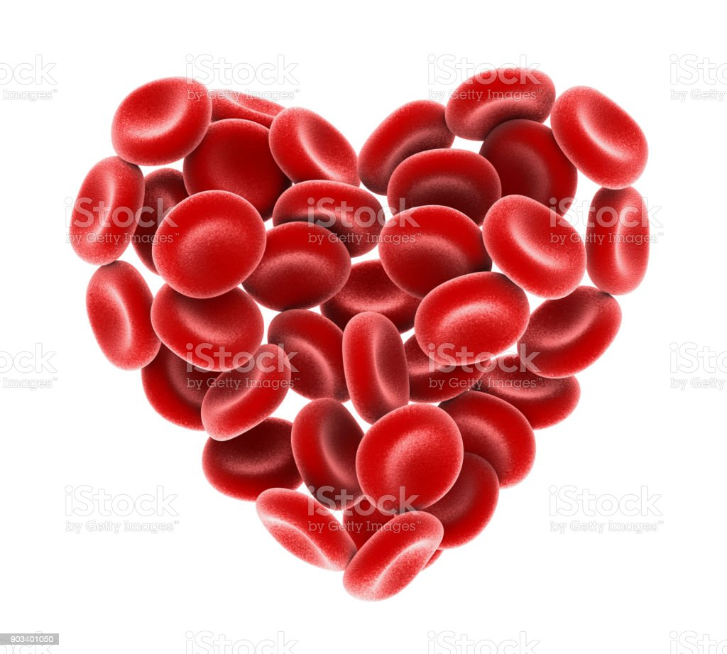 Heart of Red Blood Cells Isolated stock photo