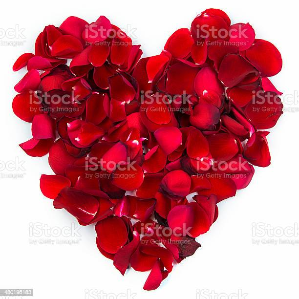 Heart of rose petals picture id480195183?b=1&k=6&m=480195183&s=612x612&h=j4q3ozhob4 xjt9j 4l3qphsz2ch4mr ul 9iw6bpzy=