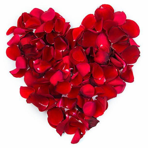 Heart of rose petals picture id480195183?b=1&k=6&m=480195183&s=612x612&w=0&h=oidp7ttv8dcpxasq3zfxsxbi6z8nm7rbo6mgt6qle5a=