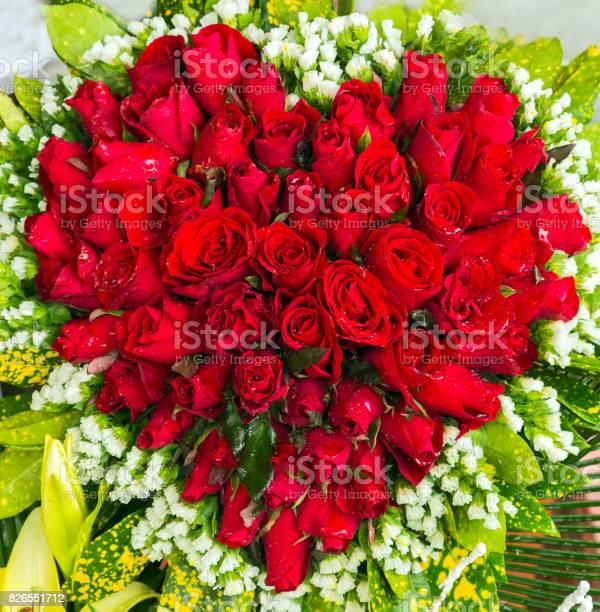 Heart of the rose flowers bouquet picture id826551712?b=1&k=6&m=826551712&s=612x612&h=bti15ozmemhyfadoz1jm0y7ake3b7jki2utpbv57ekk=