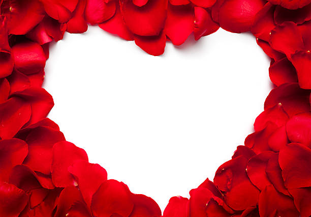 heart - rose petals stock pictures, royalty-free photos & images