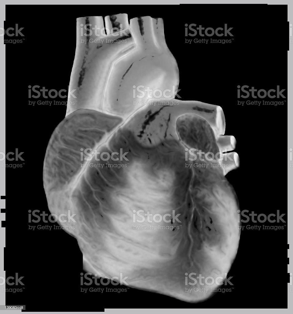 B & W Heart royalty-free stock photo