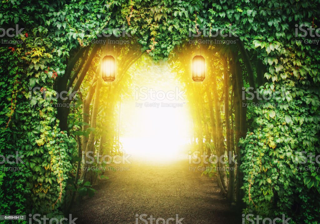 Heart road in a fantasy forest stock photo