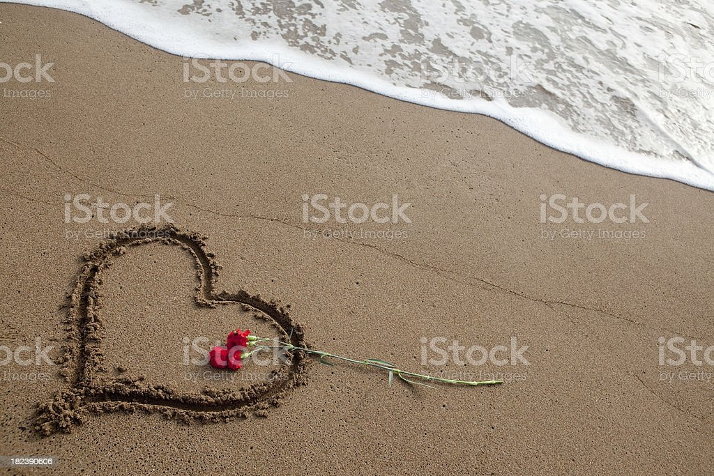 Heart shape and carnation royalty-free stock photo