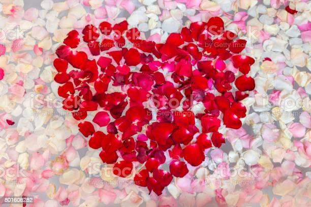 Heart shape from a red rose petal picture id801608282?b=1&k=6&m=801608282&s=612x612&h=hbswcntwp5p5u7xmp0eg ggbbbt6gemvrz3xo1nlkaq=