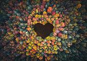 istock Heart Shape In Autumn Forest 1263996833