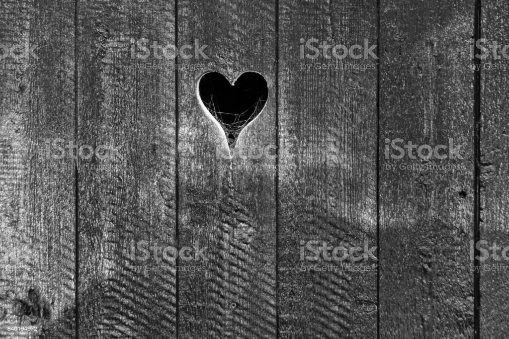 heart shape in old wooden wall of barn, with spider web stock photo