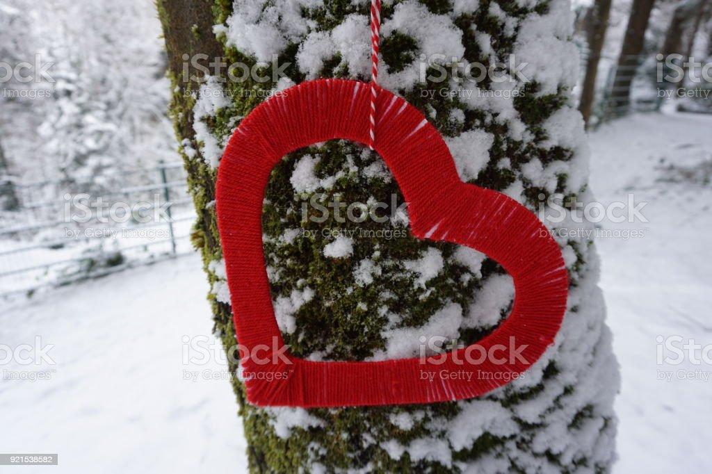 heart shape love stock photo