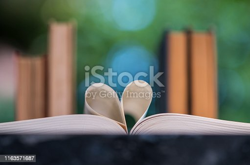 667312870 istock photo Heart shape made from book pages 1163571687