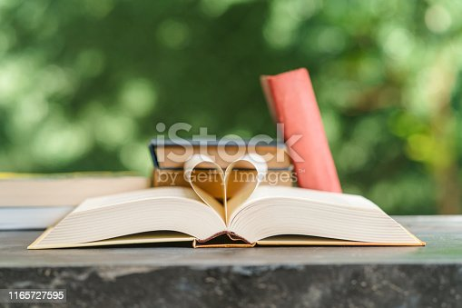 667312870 istock photo Heart shape made from book pages 1165727595