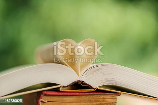 667312870istockphoto Heart shape made from book pages 1165730825