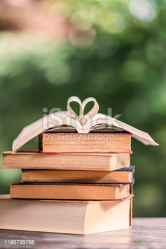 667312870 istock photo Heart shape made from book pages 1165735755
