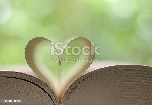 667312870 istock photo Heart shape made from book pages 1195918935