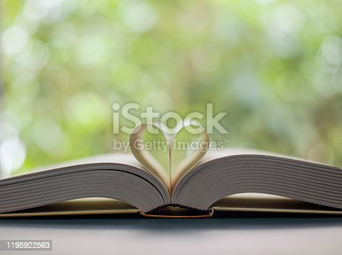 667312870 istock photo Heart shape made from book pages 1195922563