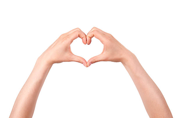 heart shape made of two beautiful palms stock photo