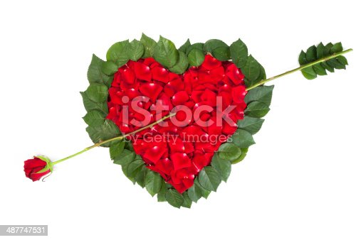 970844120 istock photo Heart shape made out of rose 487747531