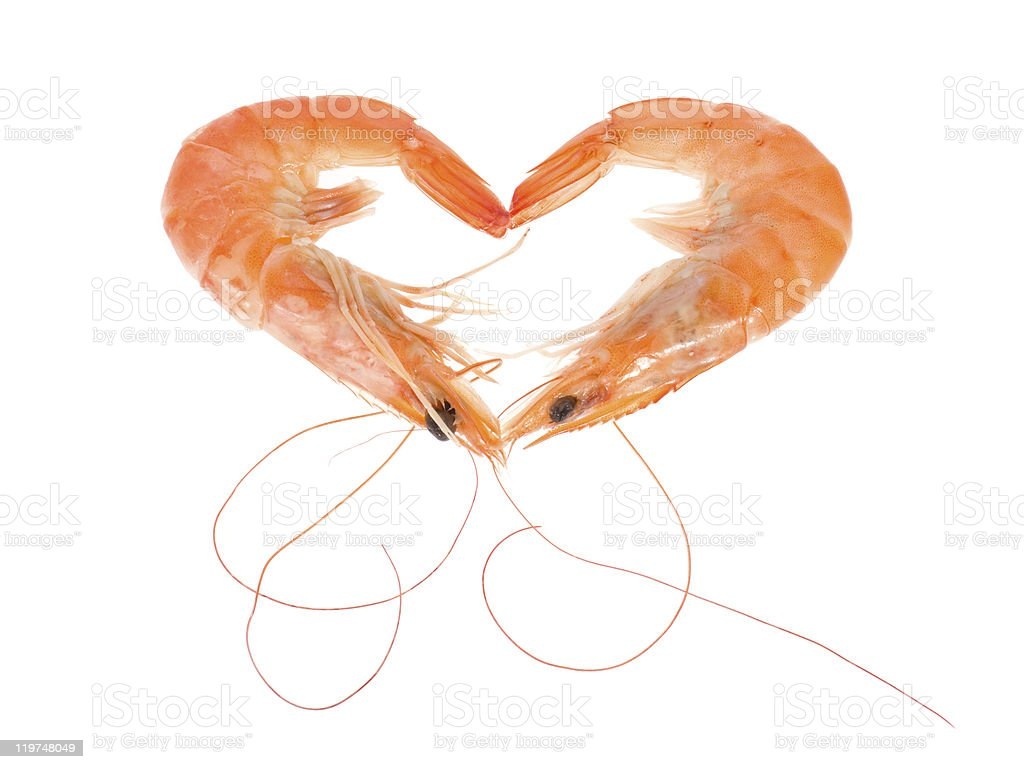 Heart shape made with two prawns side by side royalty-free stock photo