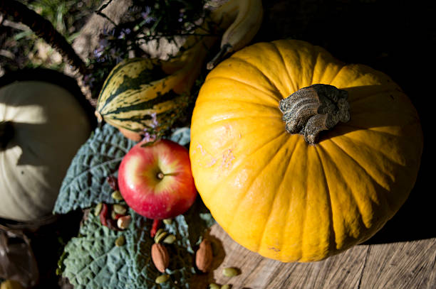 Heart Shape Pumpkin and Healthy Fall Food Background stock photo