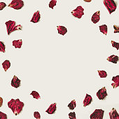istock Heart shape rose petals with copy space, on white backgrounds 639174438
