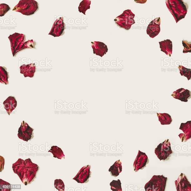Heart shape rose petals with copy space on white backgrounds picture id639174438?b=1&k=6&m=639174438&s=612x612&h=l1xpl6okqoiet8sf5cjk04ludohtl5xczer91nut85u=