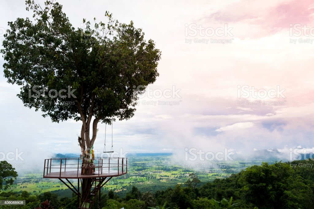 Heart shape tree with mountain view stock photo
