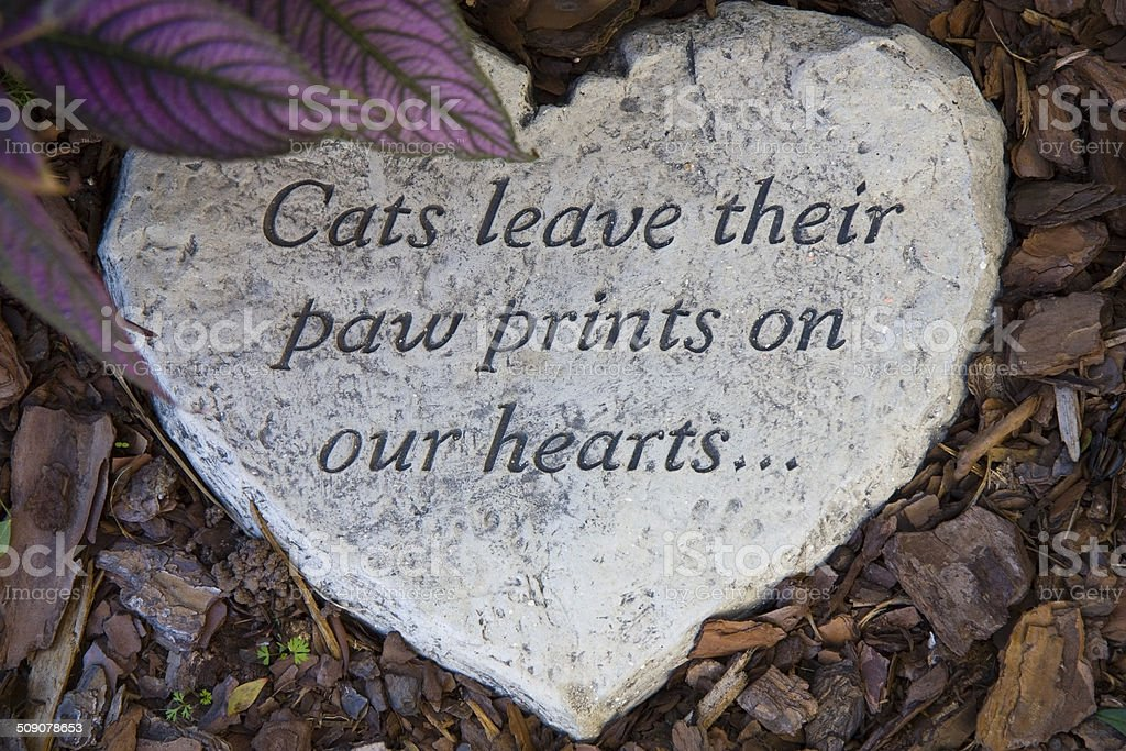 Heart Shaped, Cement Cat Marker. stock photo