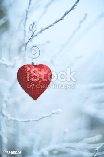 Heart shaped Christmas ornaments on snowy branches