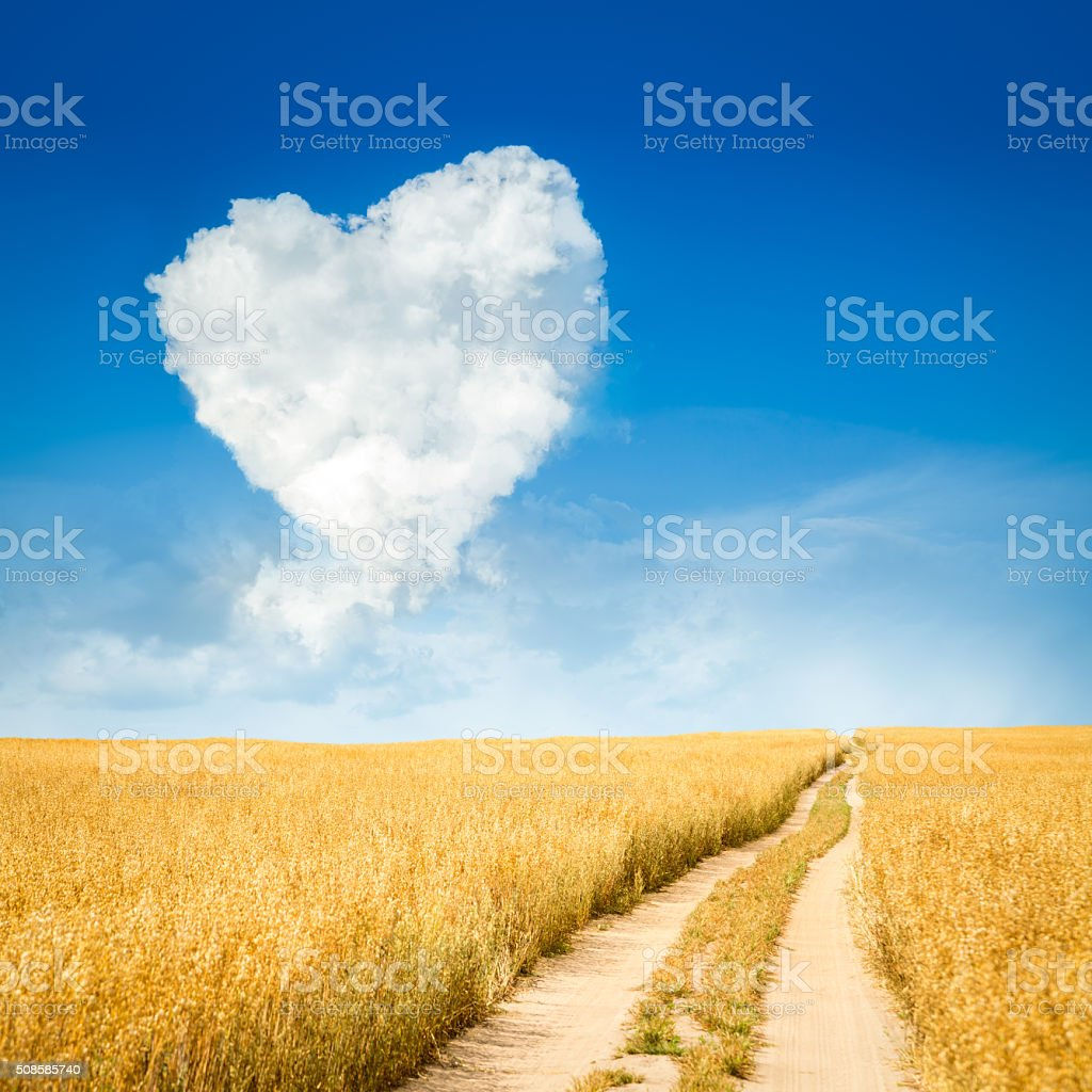 Heart Shaped Cloud and Yellow Field Landscape stock photo