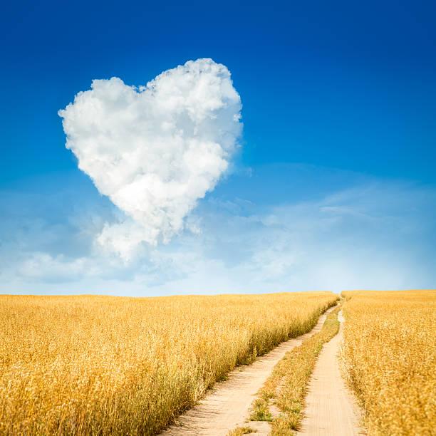Herzförmige Wolke und gelben Feld Landschaft – Foto