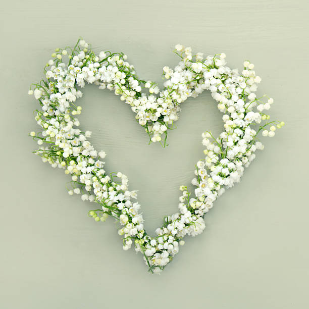 Heart shaped flower wreath on green background stock photo