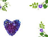istock Heart shaped flowers on a white background 1213431955