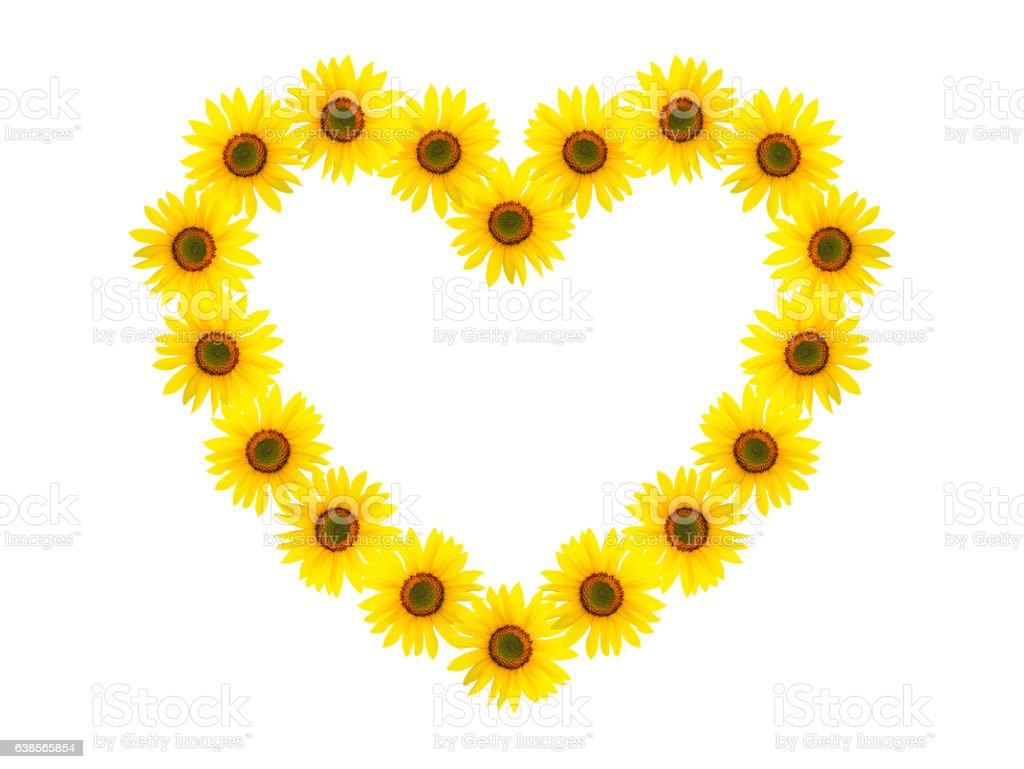 Heart Shaped Frame Made Of Sunflowers Stock Photo & More Pictures of ...