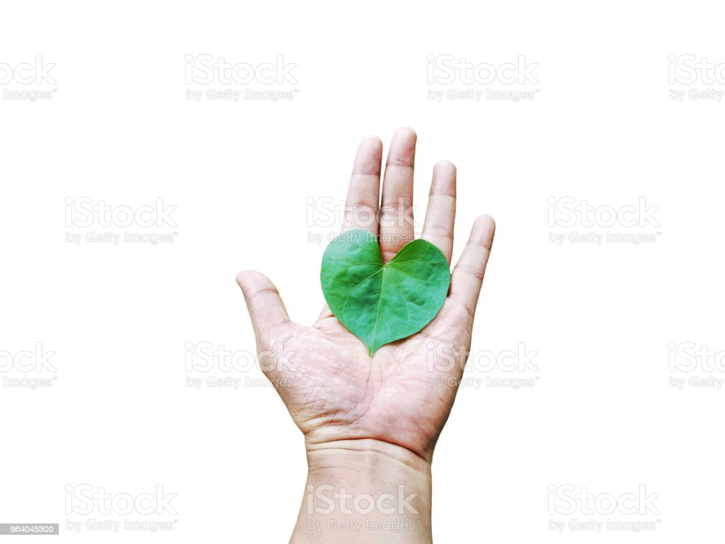 Heart shaped leaf on hand - Royalty-free Care Stock Photo
