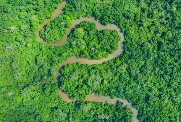 Heart shaped meandering jungle river in the rainforest, Congo Basin stock photo
