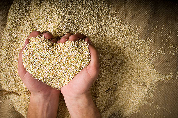 heart shaped superfood organic quinoa whole grain in hands - quinoa stock photos and pictures