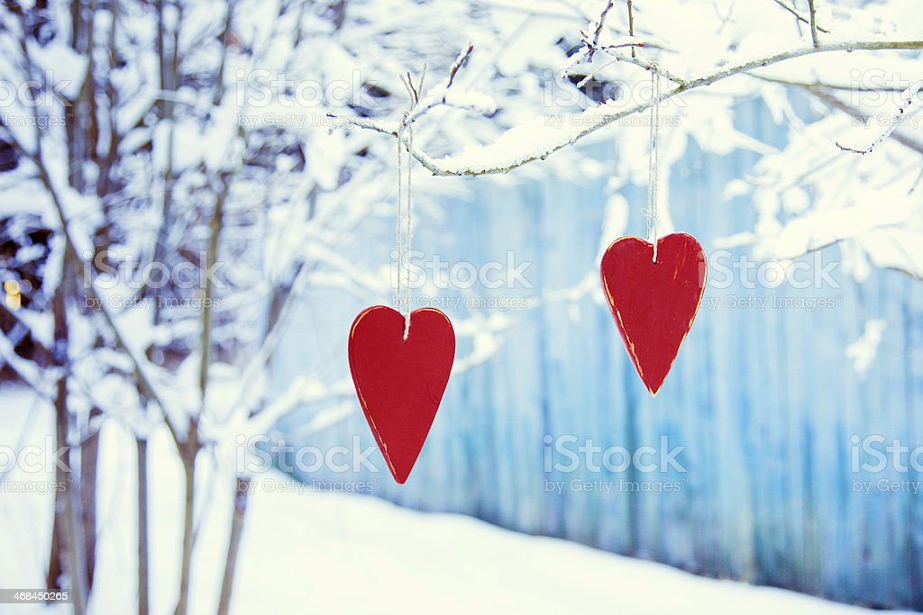heart shaped valentine's / christmas decoration hanging on the tree stock photo
