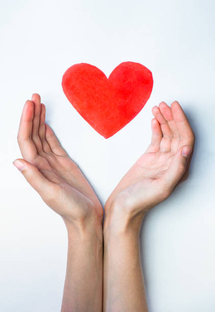 Heart sign drawn with a marker pen and hands embracing it. stock photo