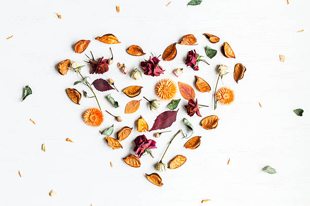 heart symbol made of dried flowers and autumn leaves - foto stock